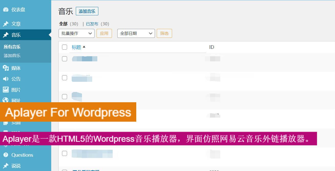 Aplayer For WordPress简约音乐插件Aplayer图片
