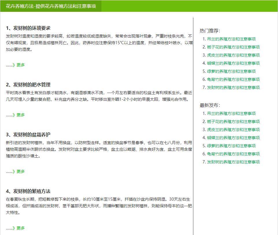 绿萝ASP精品泛站群程序最终版ASP站群程序图片