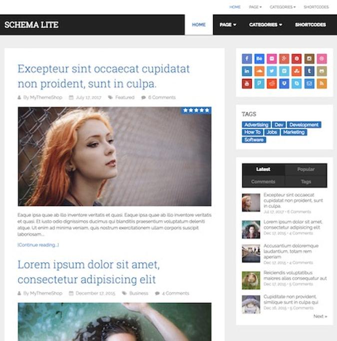 Schema Lite 一款SEO WordPress主题wordpress主题图片