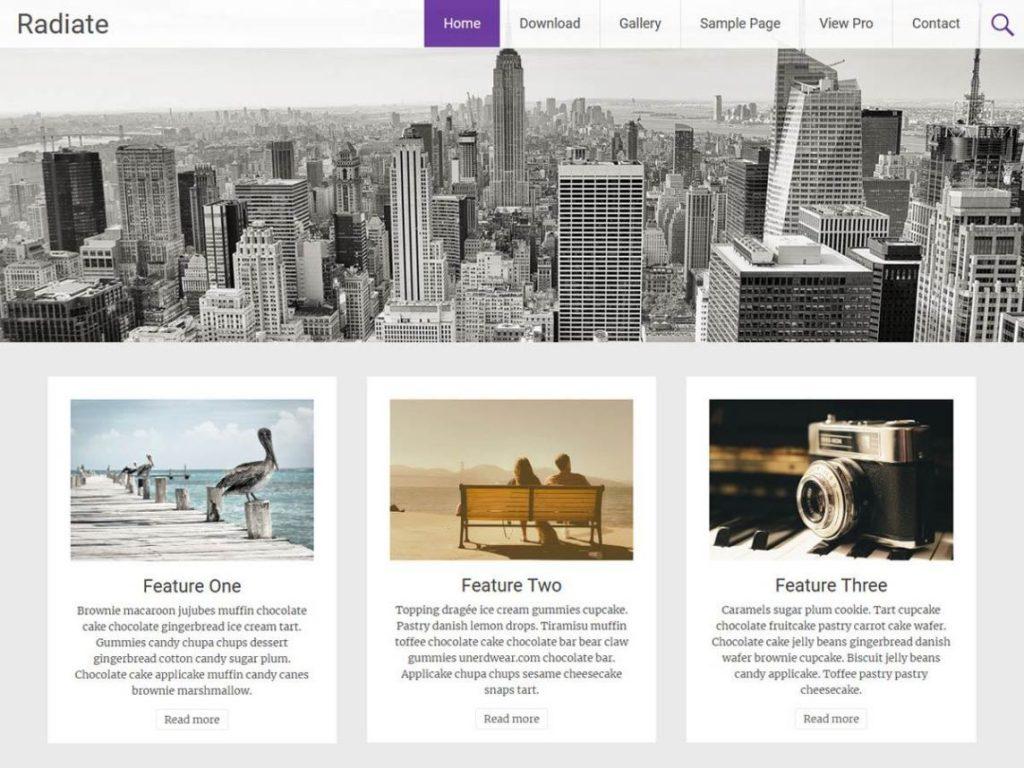 Radiate 一款免费的WordPress博客主题 插件模板图片