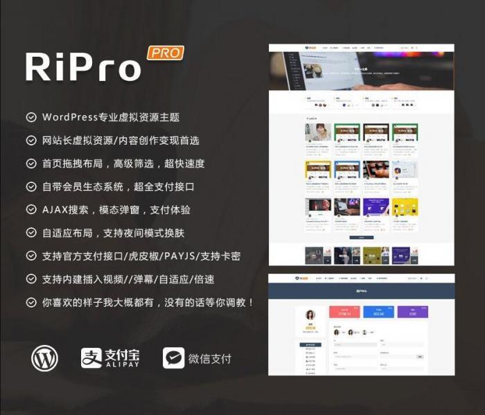 RIPro主题 v7.2 免授权修复后门完美版